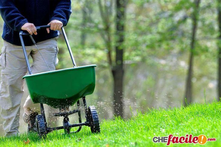La scelta del fertilizzante per la concimazione del prato