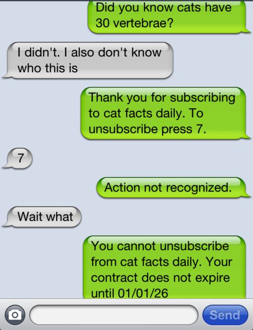 The modern prank call... I actually know someone who had done this to people for weeks at a time! Hysterical!!
