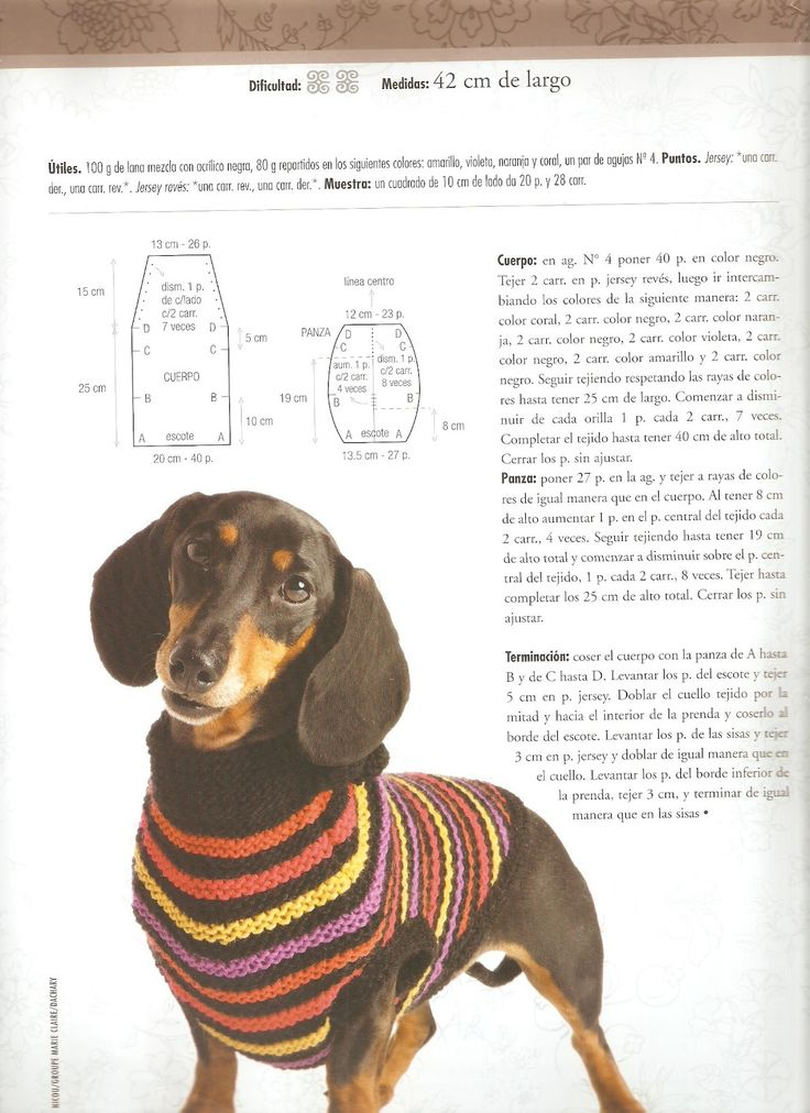 Patrones de ropa tejida para perros - Imagui http://www.imagui.com/a ...