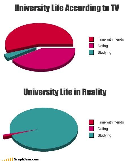 I don't think I have seen a pie chart be more accurate...back to studying