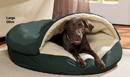 Cozy Cave Dog Bed.  I think Angus needs this for Christmas.