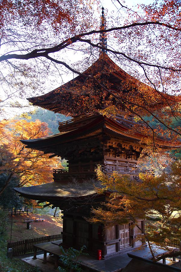 Important Cultural Property of Japan, Three story pagoda of Hokongo-in temple, Kyoto, Japan 金剛院 京都