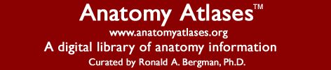 Anatomy textbooks and atlases