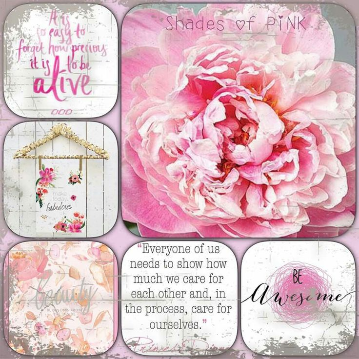 Rose thought board