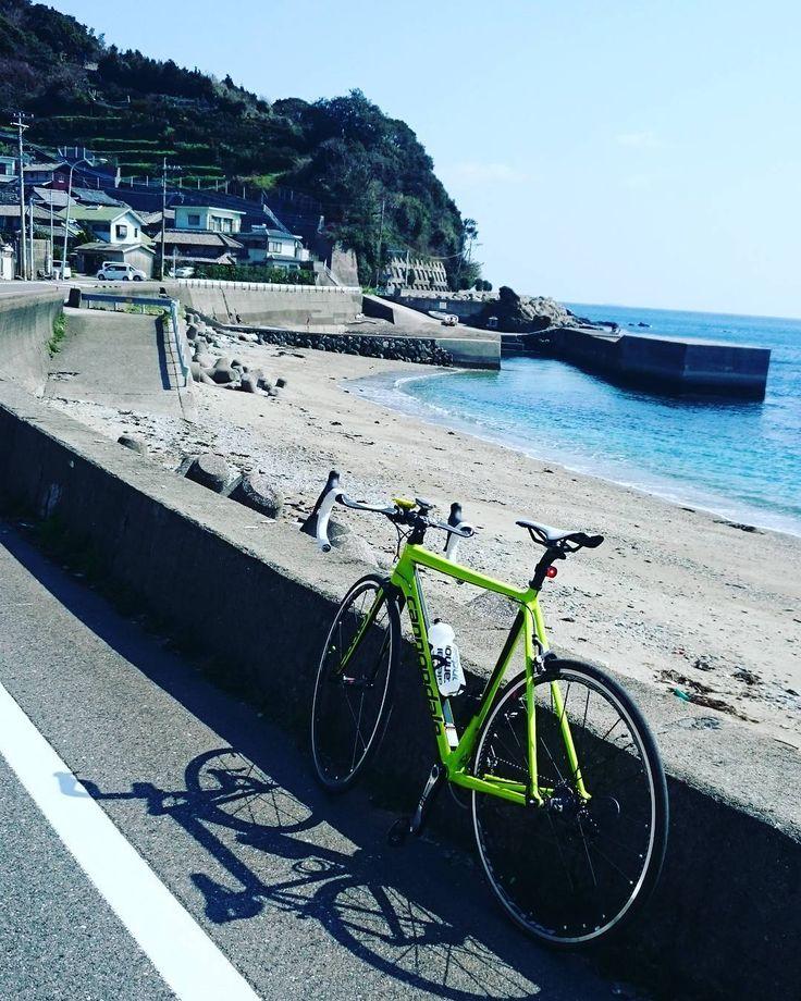 #ロードバイク #roadbike #キャノンデール #cannondaleza #caad12 #日本 #Japan #大分 #oita #海 #暖かい #春 by daaichi99