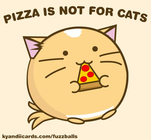 Pizza Cat Japan Anime