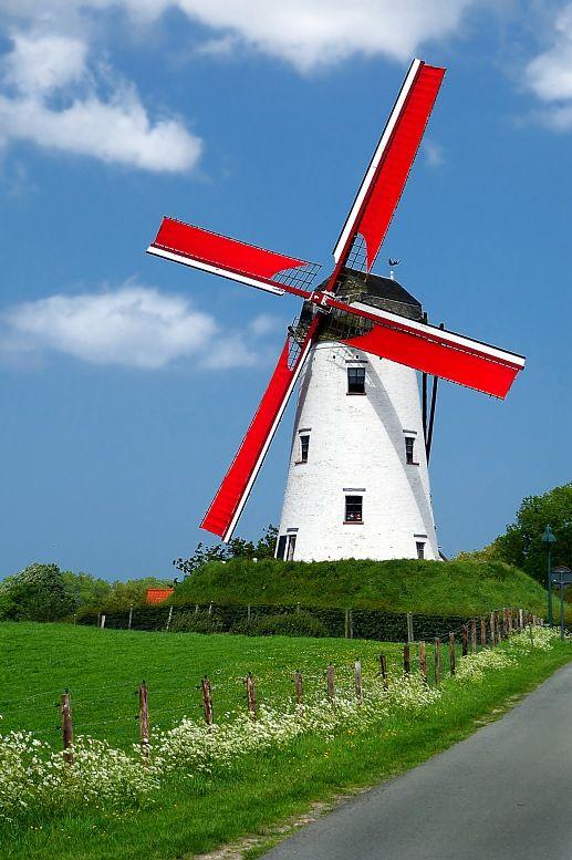 Viagens Holanda. Moinho de vento tradicional, com aletas vermelhas no campo da…