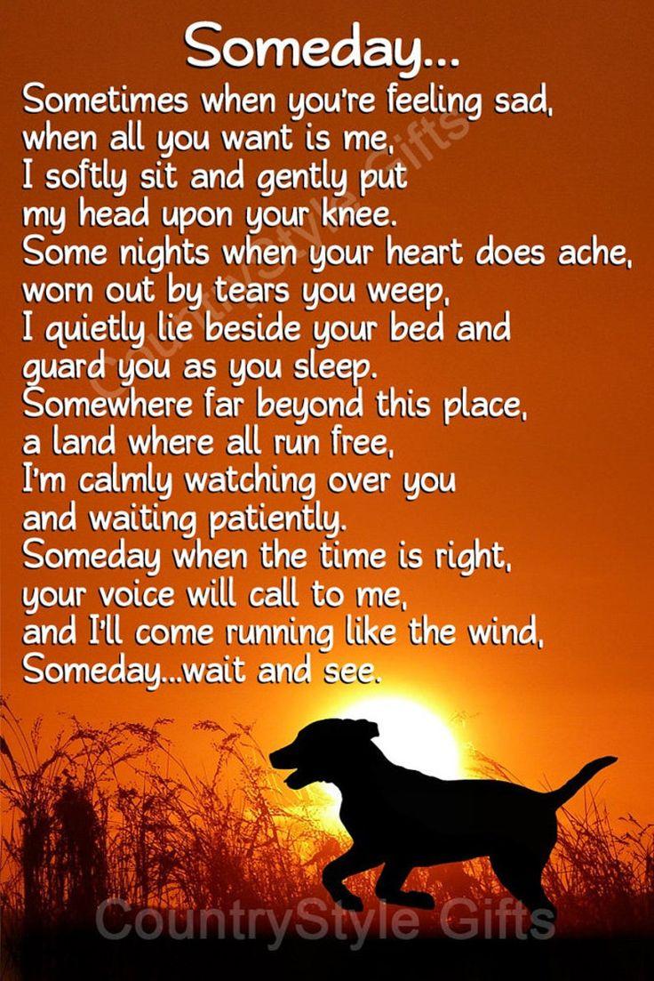 Pet Dog Memorial Waiting At The Door Rainbow Bridge Keepsake Etsy Dog Heaven Dog Heaven Quotes Pet Quotes Dog