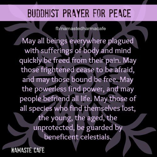 catholicism buddhism war and peace Christianity on peace and violence on questions of peace and war dialogue and proclamation in catholic universities april 6, 2018 resources blasphemy and freedom of expression buddhism christianity.