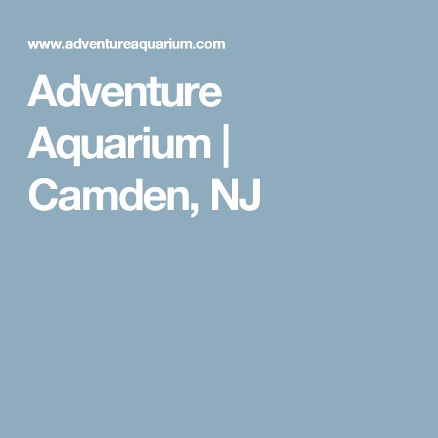25 Best Ideas About Aquarium Camden On Pinterest Camden