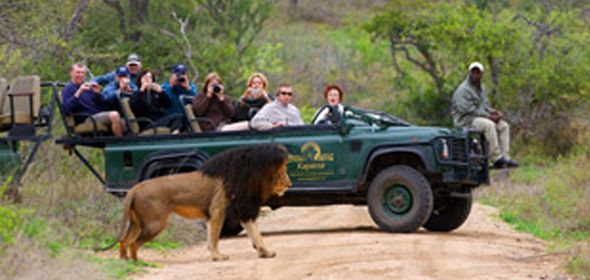 Kapama Karula - Kruger Park - South Africa