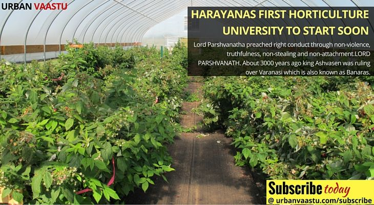 #Harayanas First #Horticulture #University To Start Soon