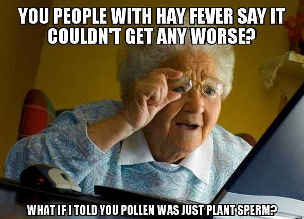 Funny Quotes About Allergies: 9 Best Allergy Jokes Images On Pinterest