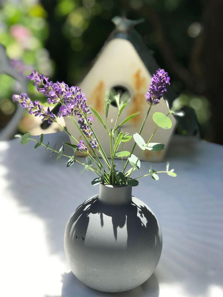 Lavendel Lila Farbe Lavendel Deko Ideen