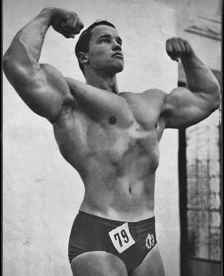 55 best Vintage Arnold images on Pinterest Bodybuilding, Workouts - new arnold blueprint app