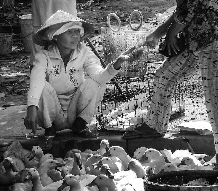 Tourist buying ducks from a vietnamese lady on the market in Hoi An.