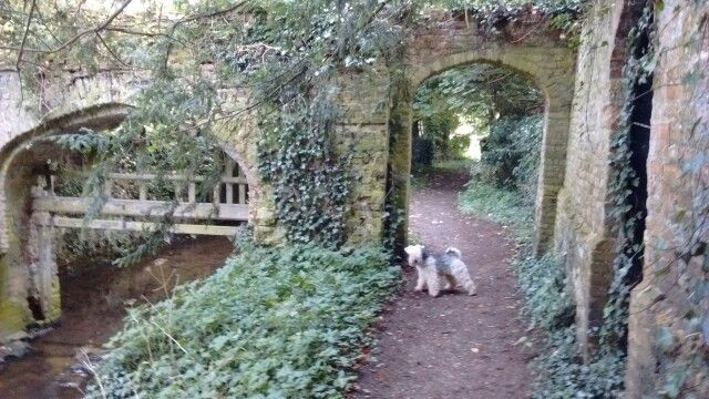 Near Audley End