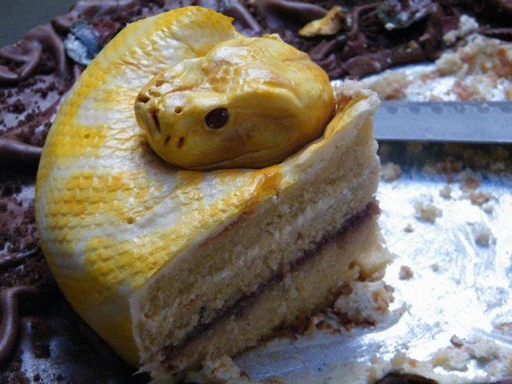 Amazing python cake.