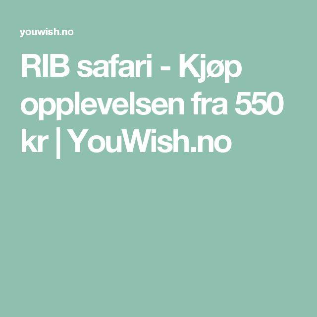 RIB safari - Kjøp opplevelsen fra 550 kr | YouWish.no