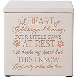 Cremation Urns for Pets SMALL Memorial Keepsake box for Dogs and Cats, Urn for pet ashes A heart of gold stopped beating four little paws at rest Holds SMALL portion of ashes (Ivory)