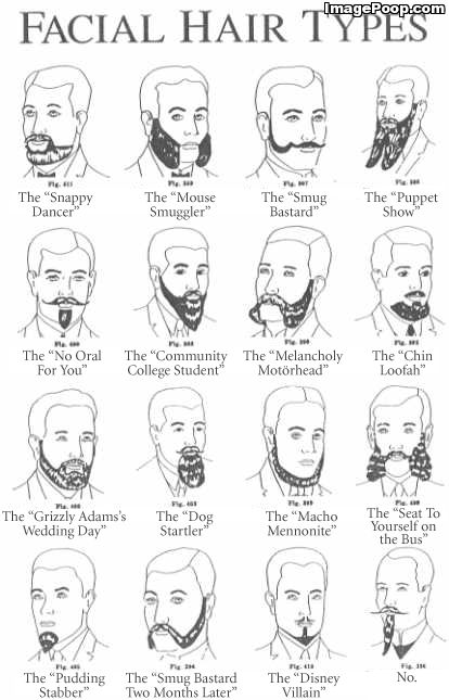 Types Of Mustaches Funny | kind of fond of the melancholy motorhead myself you