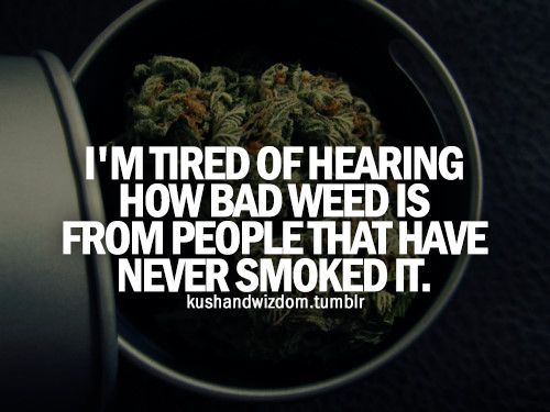 cool nice and simple.....and smoking it once or being around ppl who smoked it doesnt... by http://dezdemonhumoraddiction.space/weed-humor/nice-and-simple-and-smoking-it-once-or-being-around-ppl-who-smoked-it-doesnt/