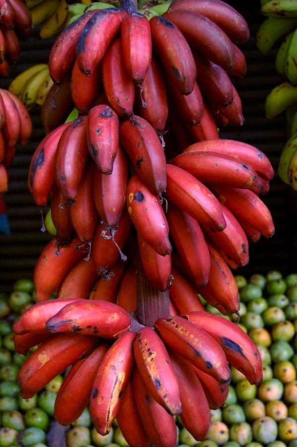 5 varietati de banane de care n-ai auzit pana acum - www.foodstory.ro