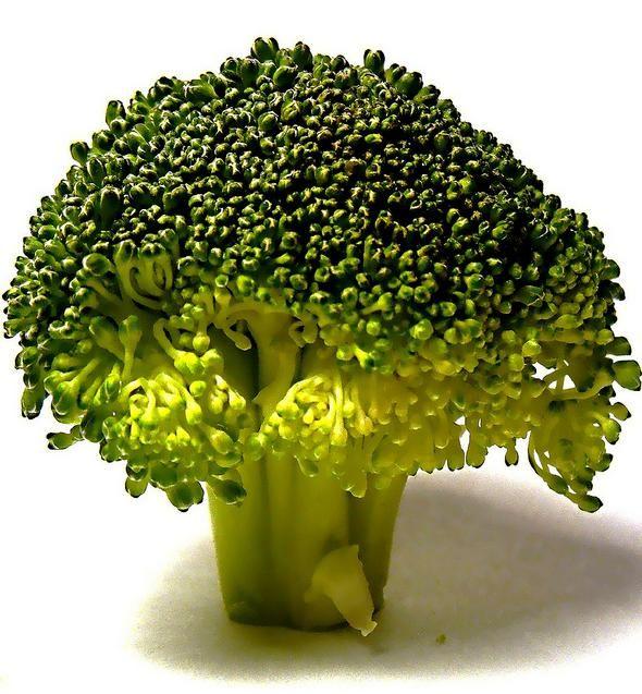 Germogli di broccoli per combattere l'autismo. La ricerca - Ambiente Bio