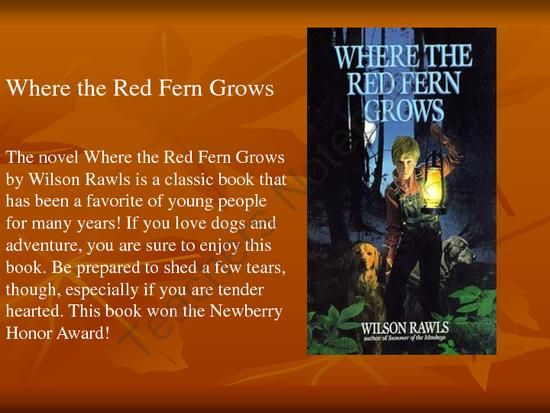 an analysis of the story where the red fern grows Where the red fern grows is the heartwarming and adventurous tale for all ages about a young boy and his quest for his own red-bone hound hunting dogs set in the.
