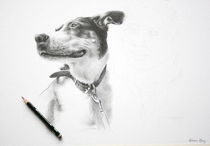 Retrato de mascotas dibujado a lápiz. Pet portrati, pencil drawing.