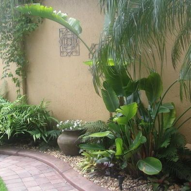 tropical front yard design pictures remodel decor and ideas page 3