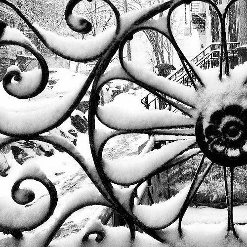Snow on Wrought Iron Railing #snow #snowstorm #nyc #newyorkcity #ilovenewyork #wroughtironrailing   Flickr - Photo Sharing!