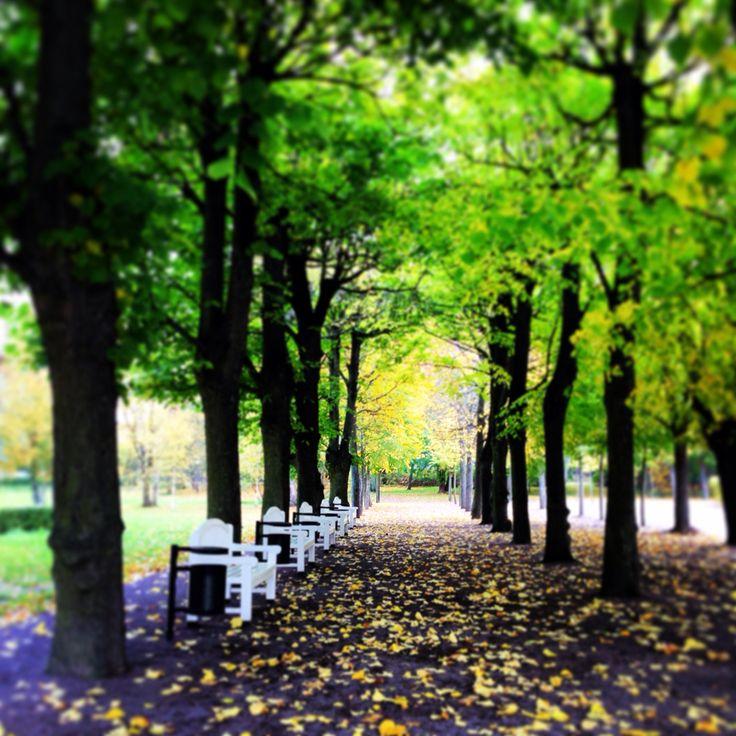 A park in Tallinn close by the Kumu artmuseum.