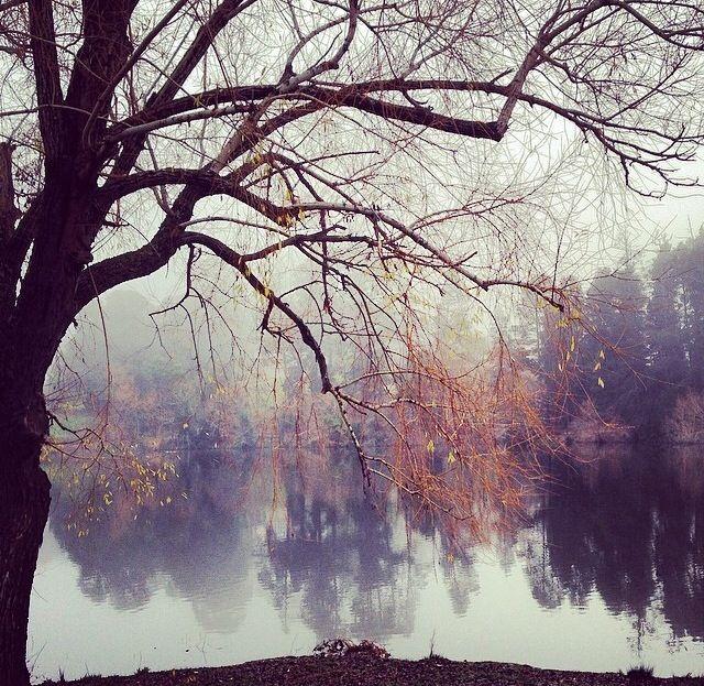 winter mantle Lake Daylesford