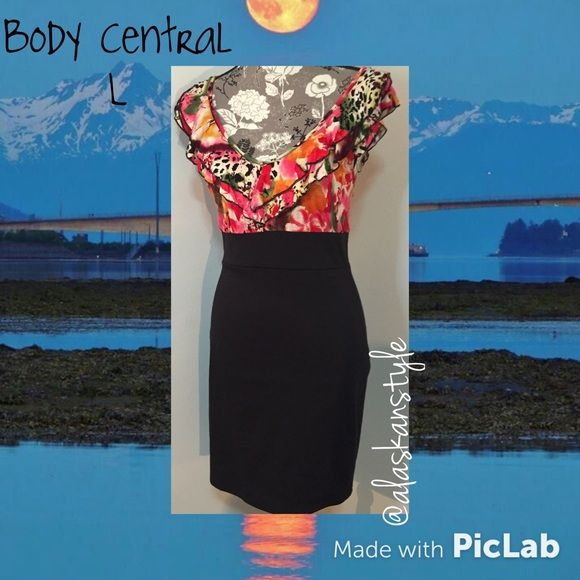 SALEBody Central bodycon dress L Gorgeous form fitting body central dress. l. No flaws. Like new. No longer available in stores or online retail. Body Central Dresses Mini