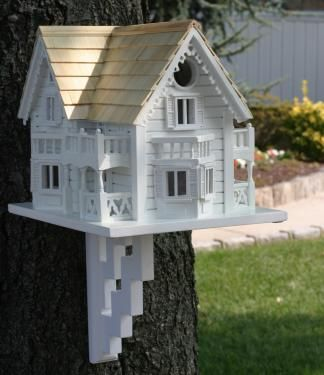 If I was a bird, I'd live here.