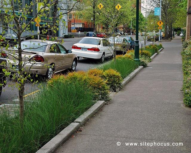 Bioswales, 12th Avenue Portland. Visit the slowottawa.ca boards:  http://www.pinterest.com/slowottawa/