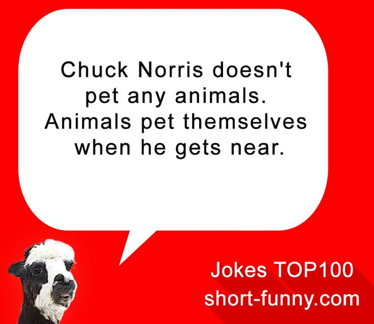 Funny Jokes and Quotes – Community – Google+