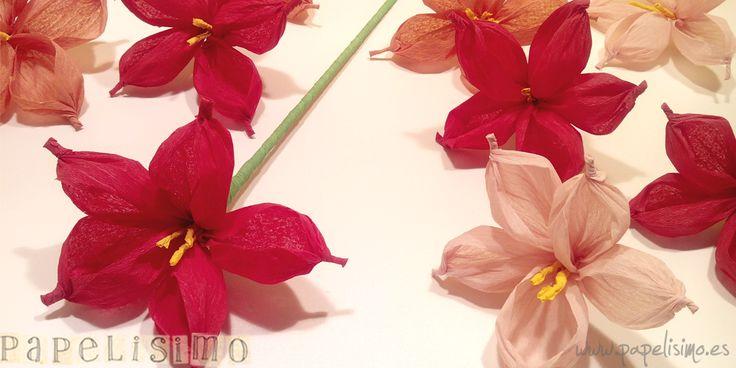 62 best images about paper flower flores de papel on - Como hacer flores de papel ...