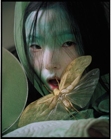 The lovely Fae was no longer afraid, for the dragonfly was her friend to guide her thru the dark woods. Photo by Tim Walker