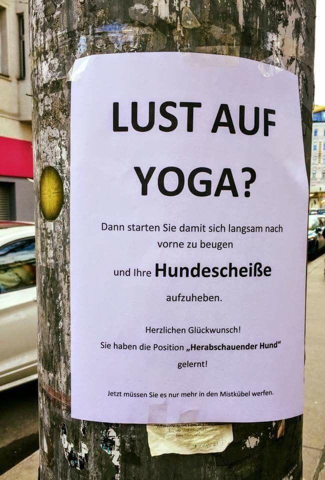 Dieser Aushang in Köln ist keine Yoga-Einladung, sondern eine Abrechnung mit Hunde-Besitzern – Nadine Kreuzinger
