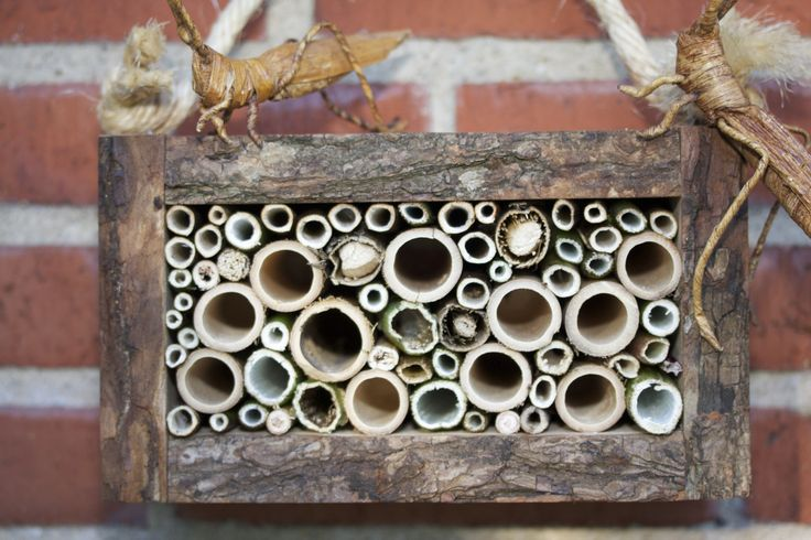 """Bug Hotel """"Bugs Palace"""""""