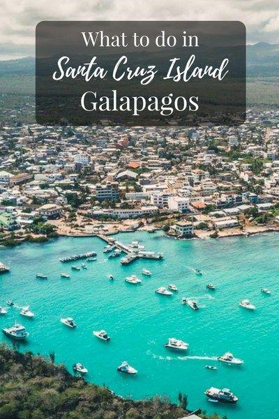 What to do in Santa Cruz Island Galapagos