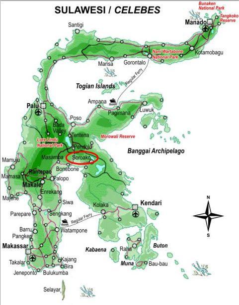 Soroako-map.jpg (481×612)