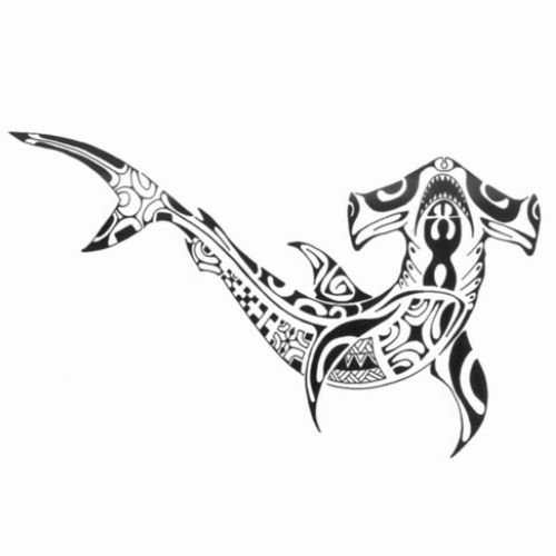 Modèle tatouage requin marteau polynesien