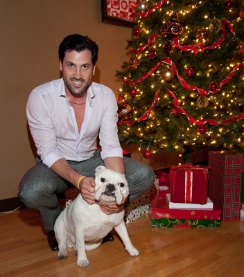 Maksim Chmerkovskiy and his dog at Christmas = too much cuteness.