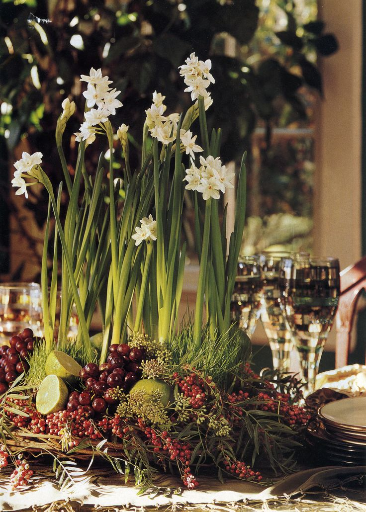 Holiday Paperwhites...Some people hate the smell of them...I love. Smells like Spring in Winter.