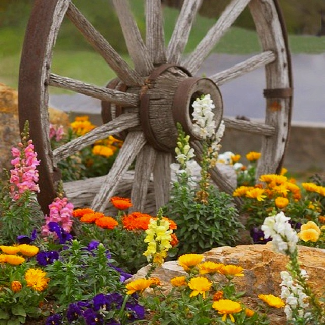Beautify you garden with old wheels