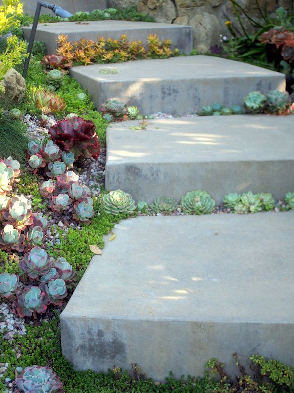 1218 best Garden Goodness images on Pinterest Yard ideas