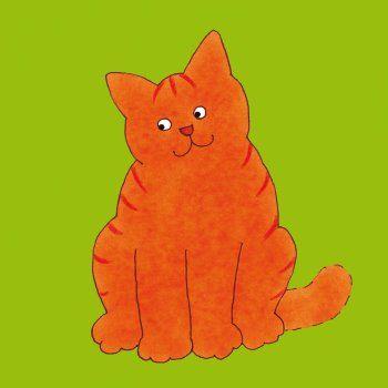 29 Best Images About Dikkie Dik On Pinterest English